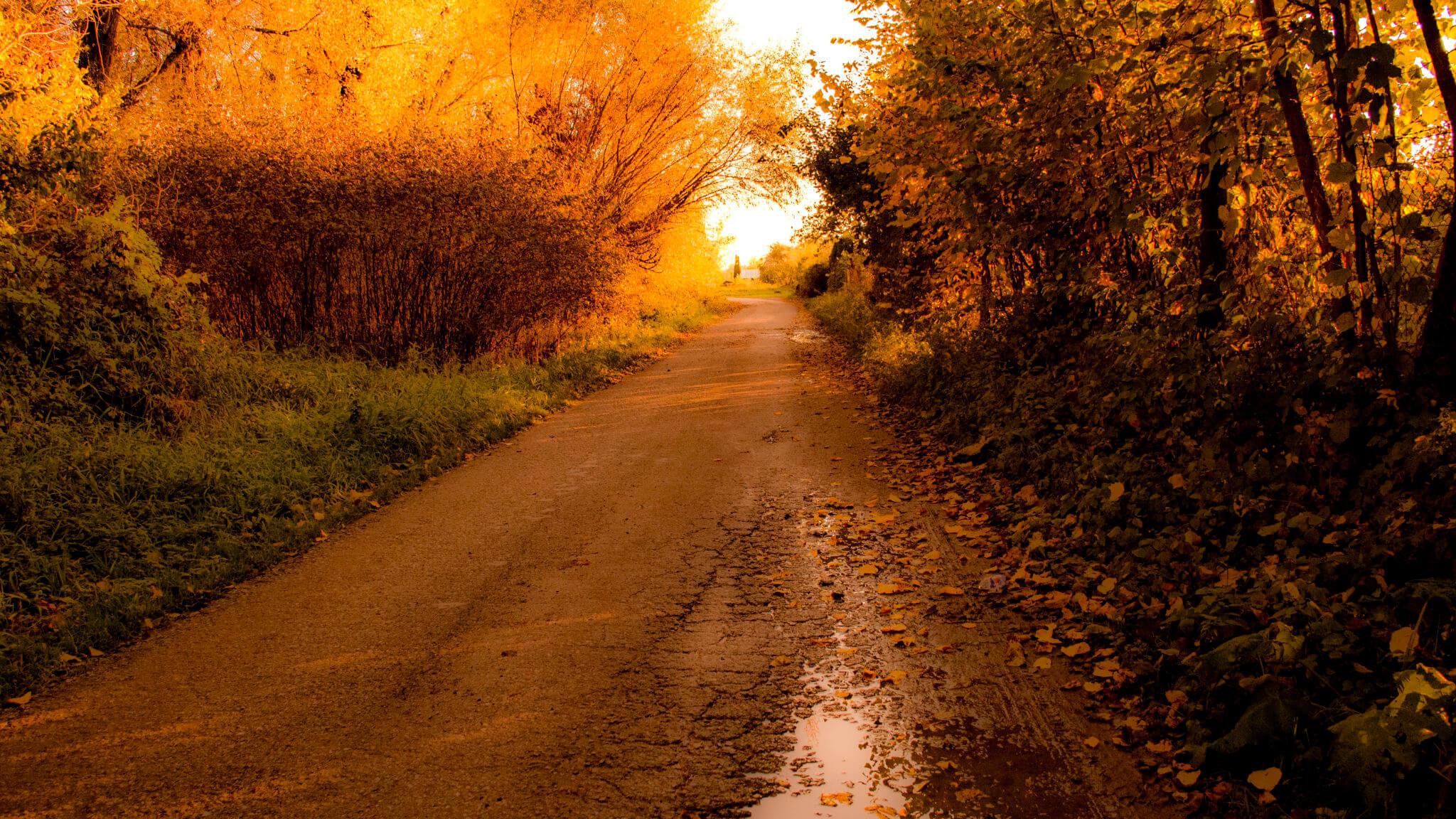Jesenná fotka