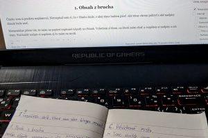 Písanie slovenského blogu, rozpis a plán, stratégia a metóda